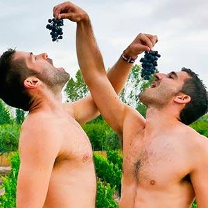 Parejas gays